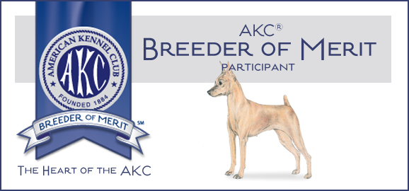 AKC Breeder of Merit Participant